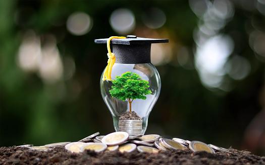Bagaimana Contoh Essay Beasiswa Unggulan S1 2021? Sebuah Contoh Dari Awardee BU
